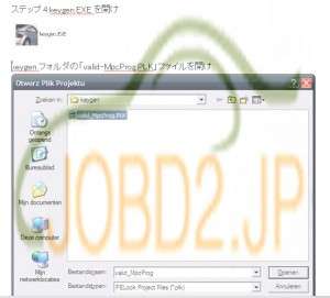 BDM CMD clone V1255 crack software-a-3